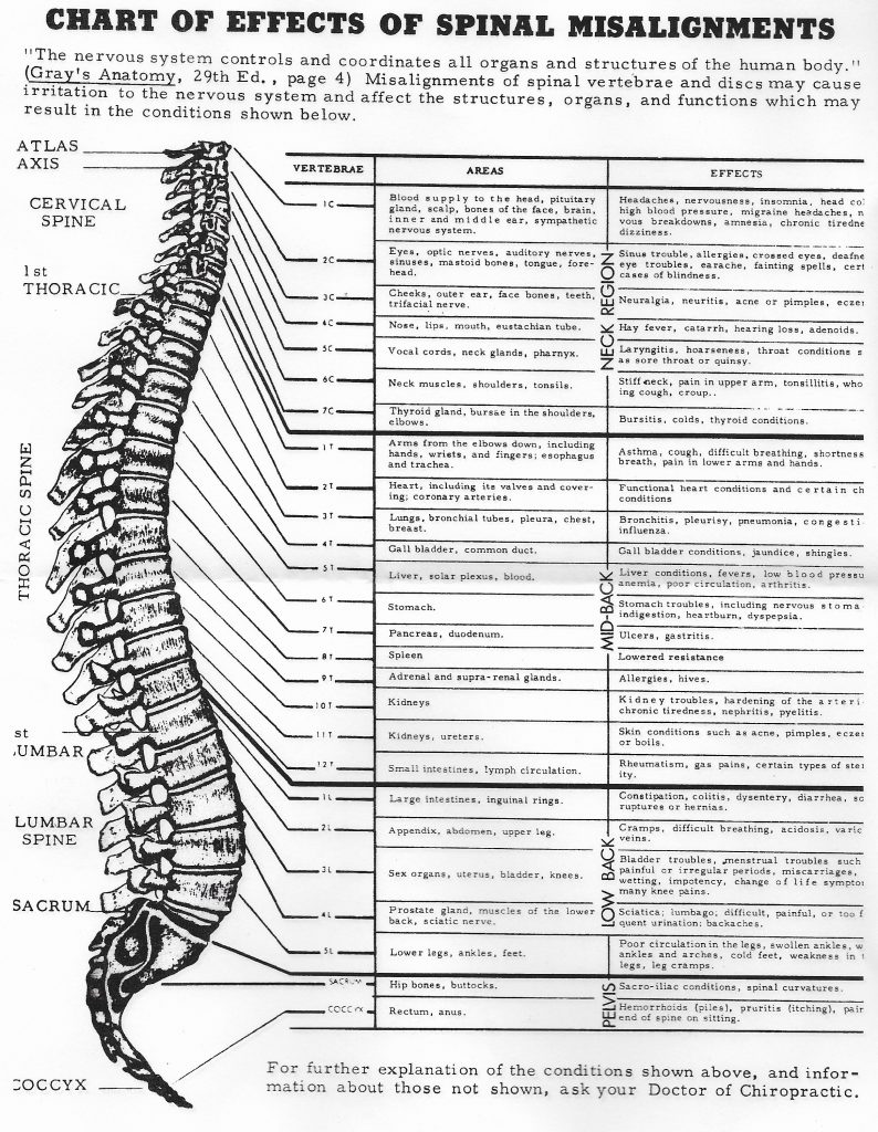 Effects Of Spinal Misalignments Chart Nerve Chart Euclid